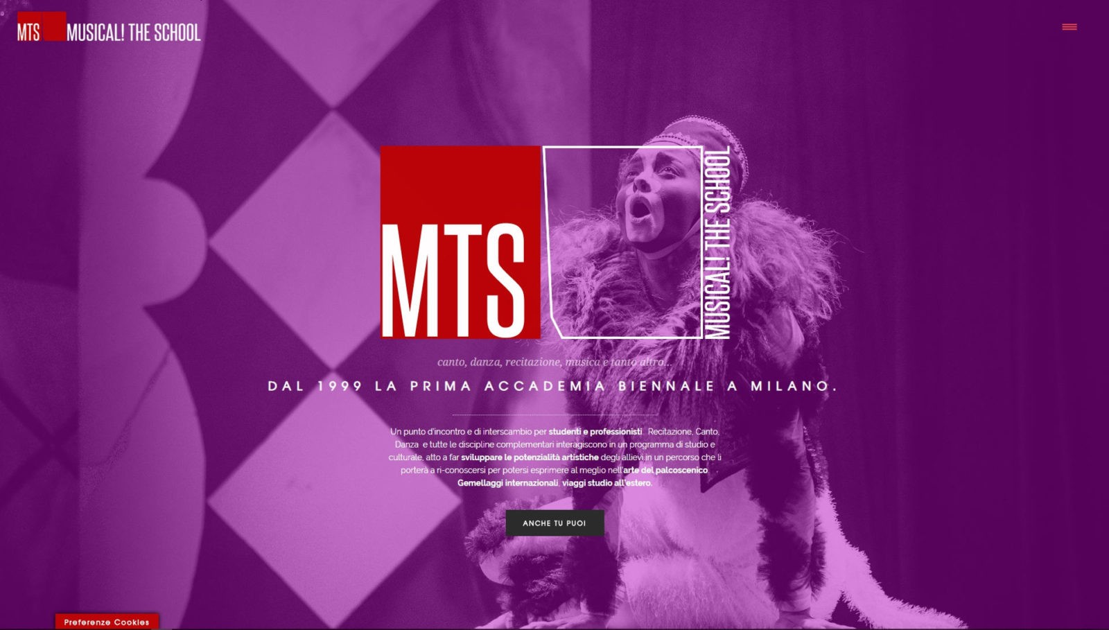 MTS – MUSICAL! THE SCHOOL – RESTYLING WEBSITE